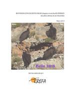 Informe 2014 buitre negro en Pirineos (Castellano)